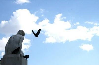 o-pensamento-a-voar